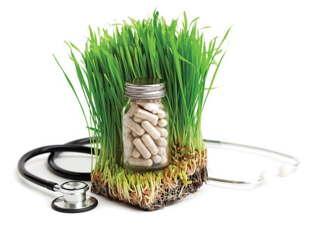 Cómo La Medicina Ortodoxa Contrasta Con La Medicina Alternativa