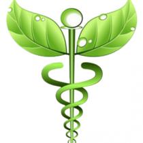 Naturopatía Es Una De Las Mejores Formas De Medicina Alternativa