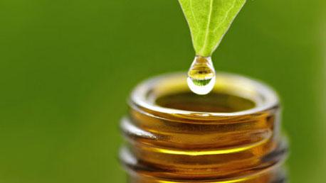 ¿Cómo Funcionan? Aromaterapia Y Aceites Esenciales